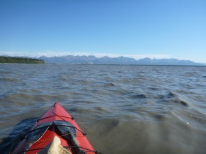 Bob Vollhaber approaches the end of his journey in Anchorage after 5 months in his canoe. Photo courtesy Bob Vollhaber.