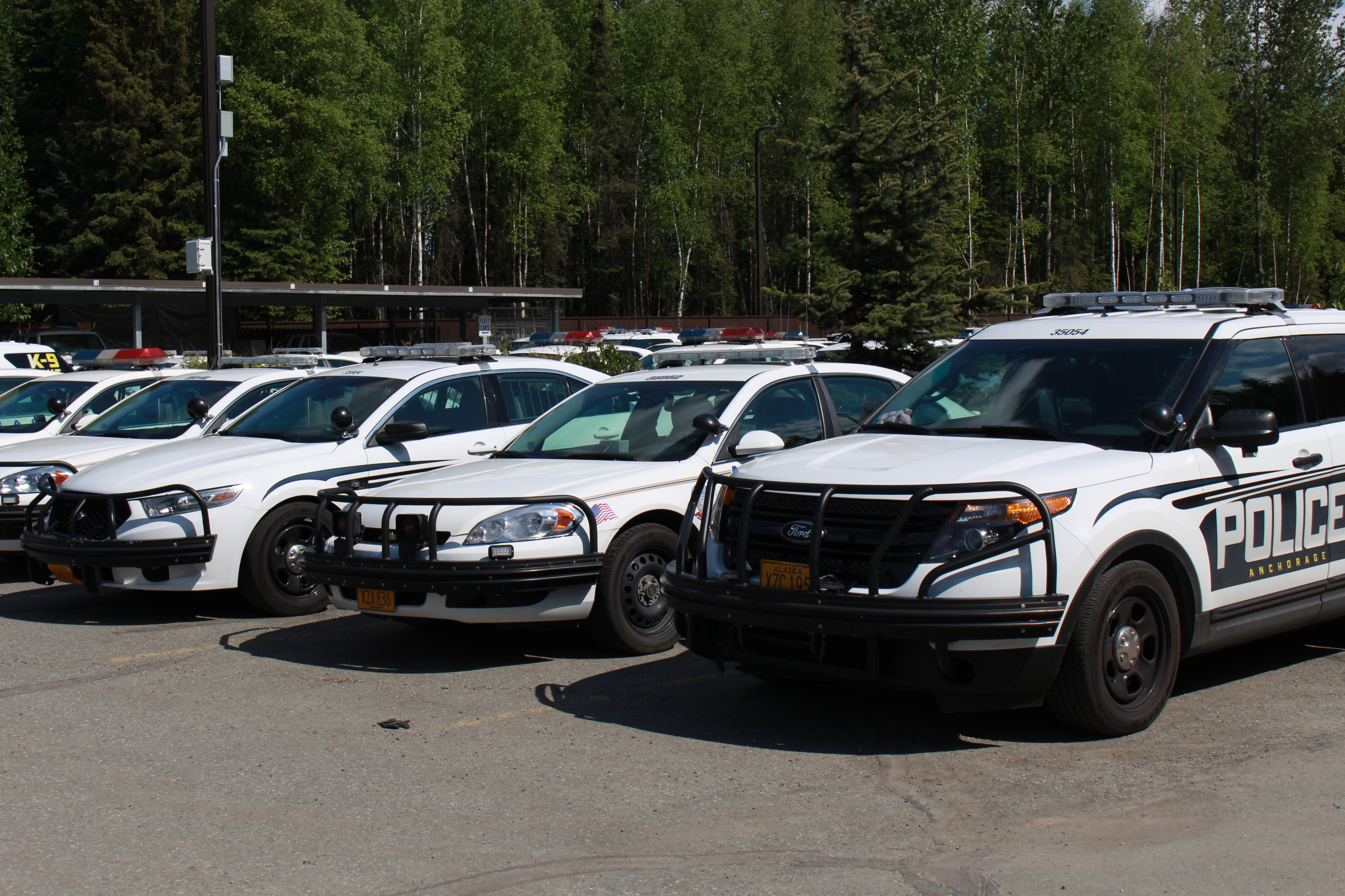 30 count indictment rains down on accused car theft ring for Department of motor vehicles anchorage alaska