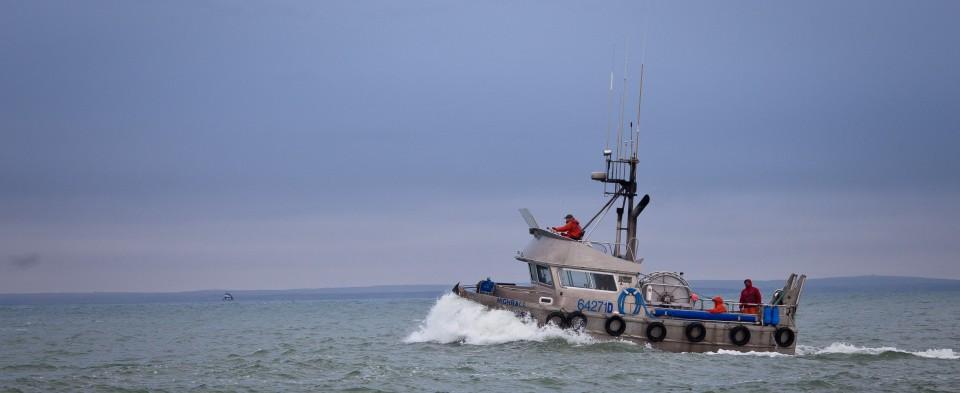 (Photo courtesy of Bristol Bay Regional Seafood Development Association