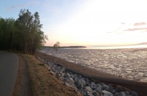 View from the Tony Knowles Coastal Trail