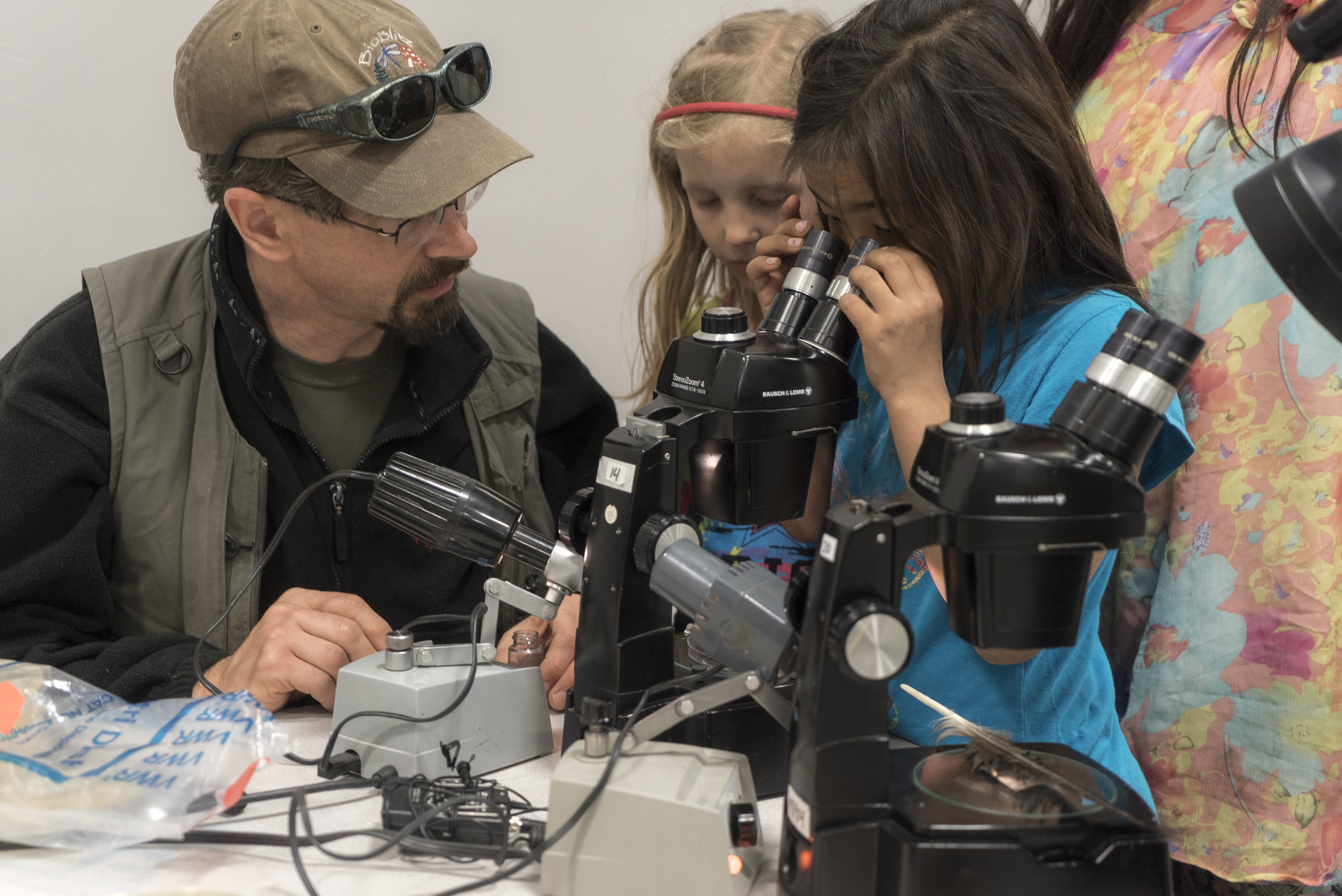 Seven-year-old Anna Nukapigak looks through a microscope at samples. (Photo courtesy of the National Park Service)