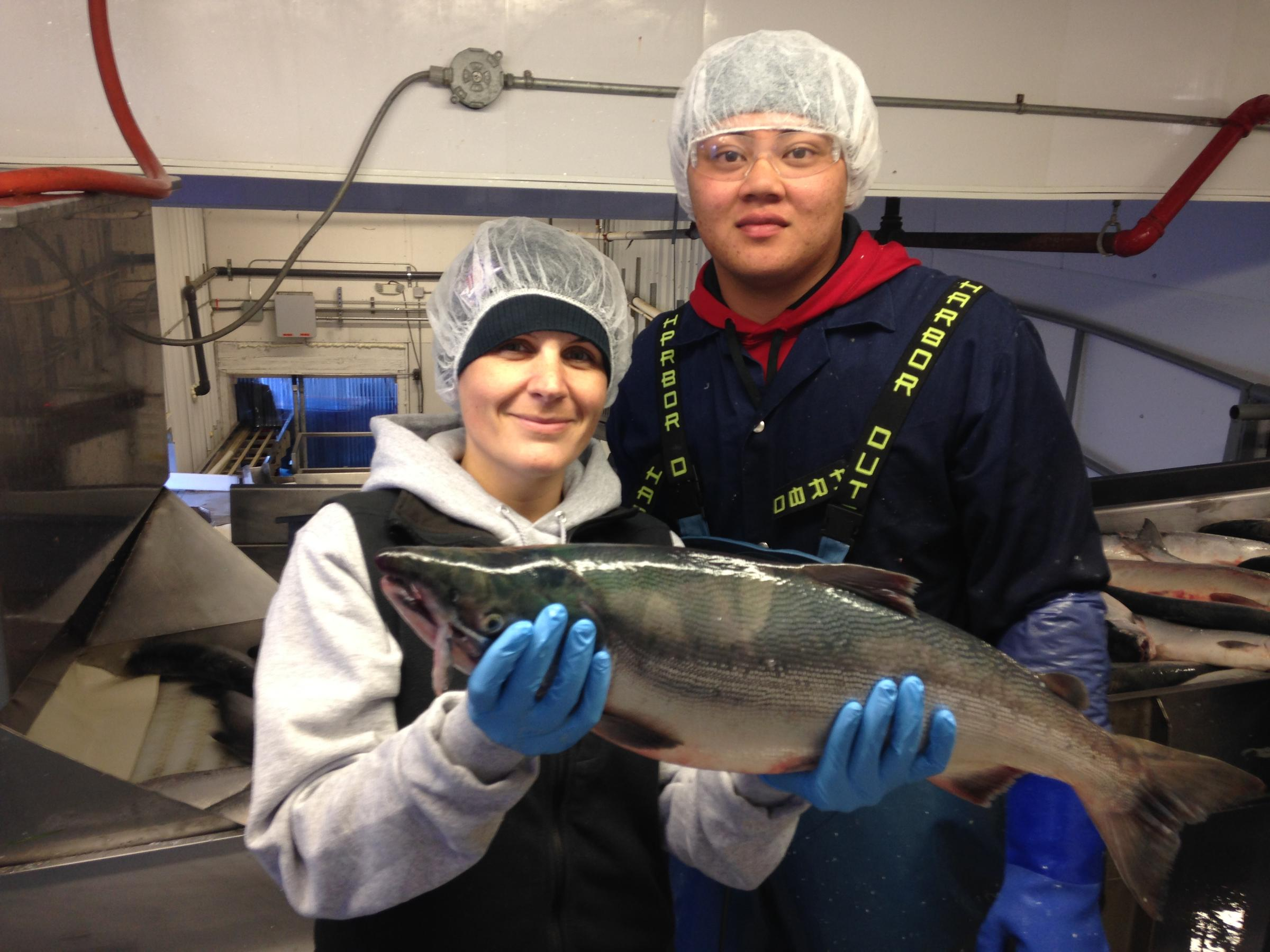 east coast fishery essay