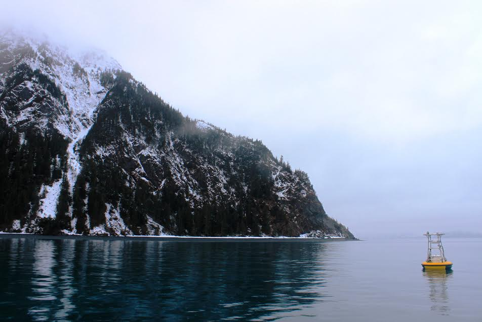 A buoy in Seward's Resurrection Bay measures ocean acidification parameters every three hours. (Photo courtesy Alaska Ocean Acidification Research Center)