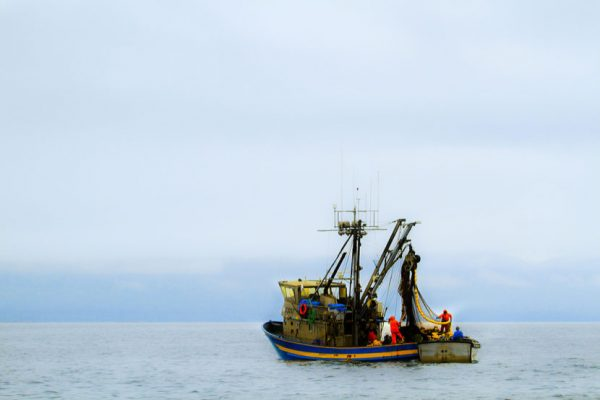 Commercial fishing in Alaska is a multi-billion dollar industry. (Aftab Uzzaman/Flickr)