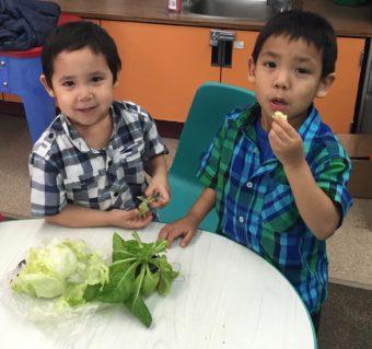 Kids in St. Paul sample lettuce. (Photo courtesy of Lauren Divine)
