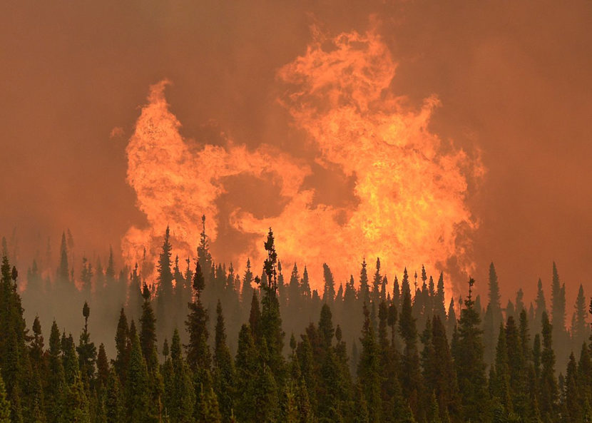 Flames from the Funny River Wildfire flare up on May 24, 2016 in Soldotna, Alaska. The wildfire started unusually early in the season and burned nearly 200,000 acres on the Kenai Peninsula. (Photo by Rashah McChesney/Peninsula Clarion)
