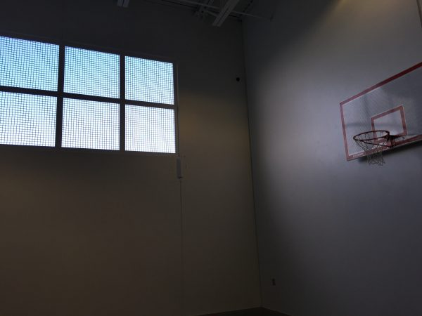 A window in a sparse cel