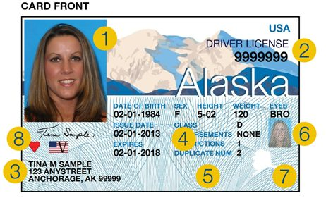 Comply Reluctant Public - Flying With Barrier Alaska Faces To Possible Media Id Real