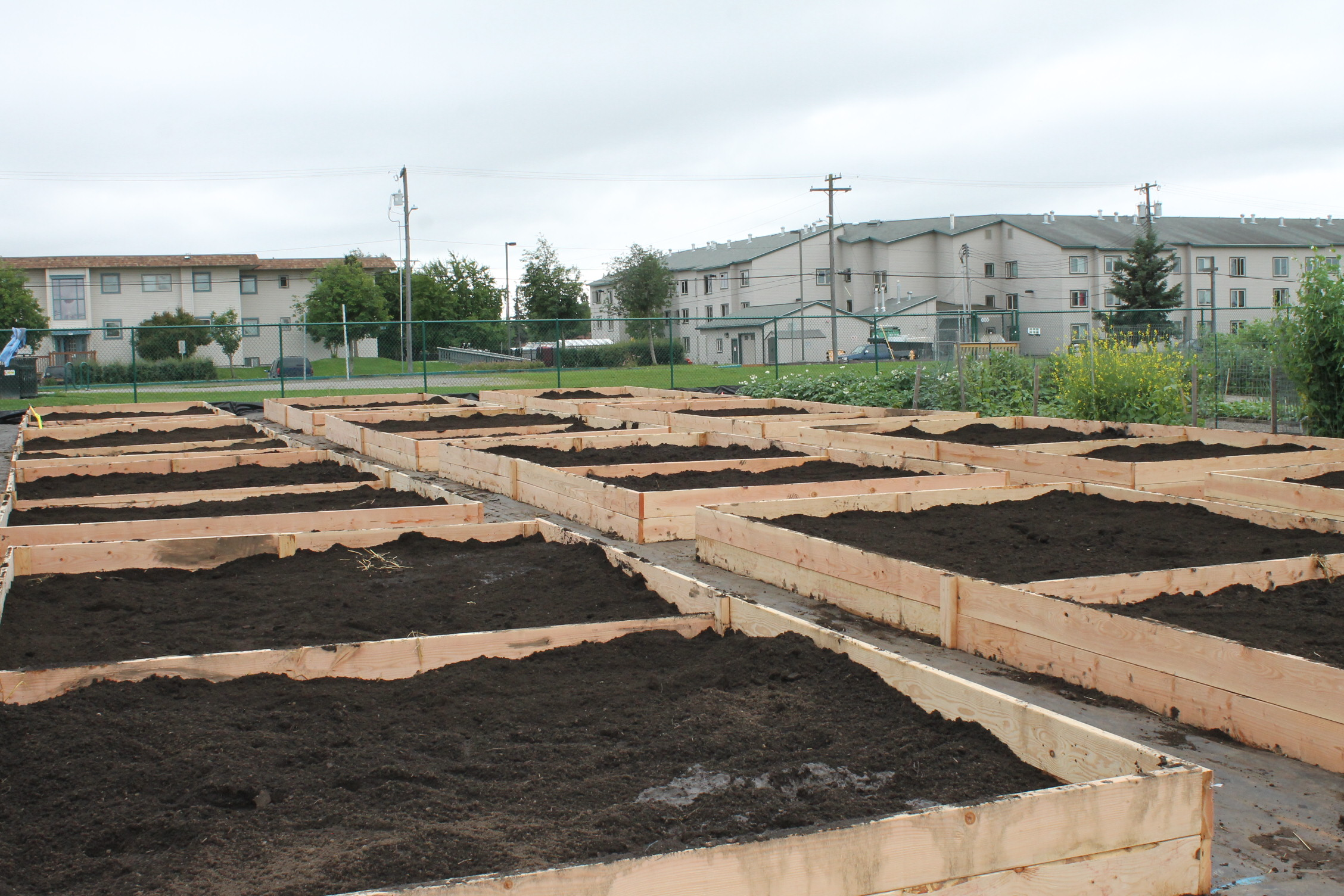 Anchorage Parks And Recreation Builds New Community Garden Plots To Keep Up With Demand Alaska