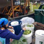 12012017_Compost2
