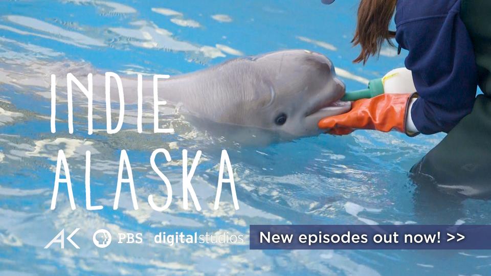 Indie Alaska from Alaska Public Media