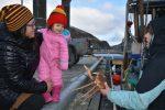 04022018_Unalaska crab1