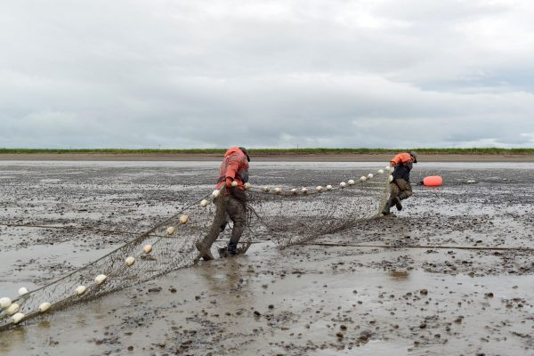 People haul a net up a sandy beach
