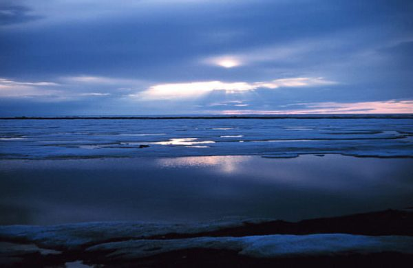 Trump administration appeals ruling that blocked Arctic offshore drilling