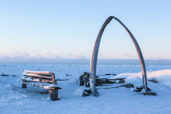 An arch in the snow made from giant whale ribs