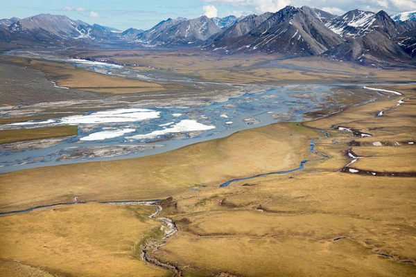 New York Times reporter discusses story revealing ANWR oil test well was 'worthless'