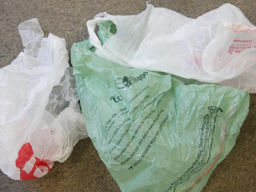 Legislature considers plastic bag ban