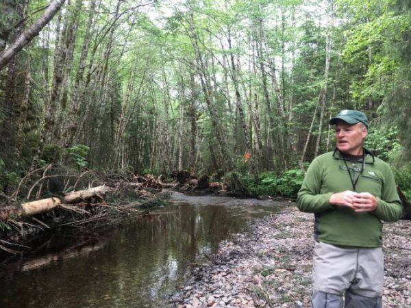 Grassroots group restores creeks in Southeast