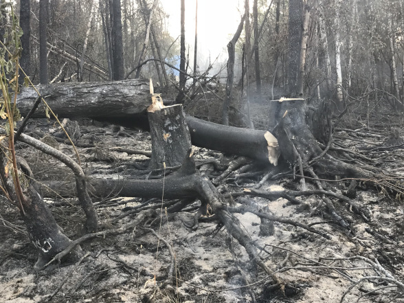 The latest on Southcentral wildfires: Aug. 22, 2019