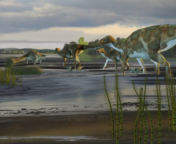 Arctic dinosaurs and ancient ecosystems
