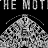 The_Moth_Logo
