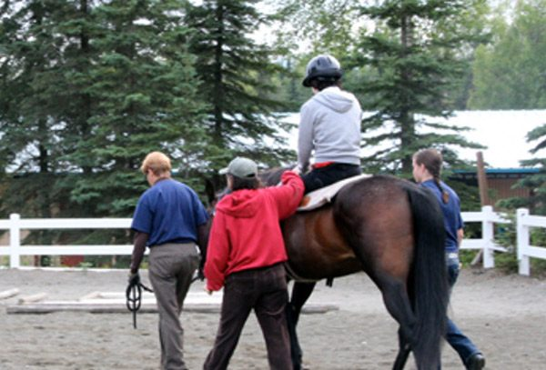 Local: How horses assist in human physical therapy