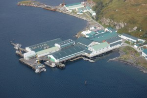 An aerial view of OBI Seafoods showing a blue-roofed processing plant jutting out into the water from a green island.