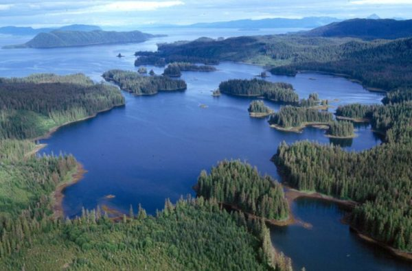 An aerial image showing a bay with several small islands covered in spruce trees