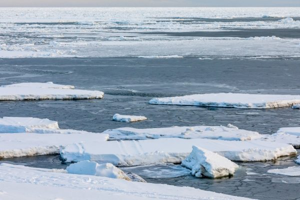 Scattered blueish sea ice in water