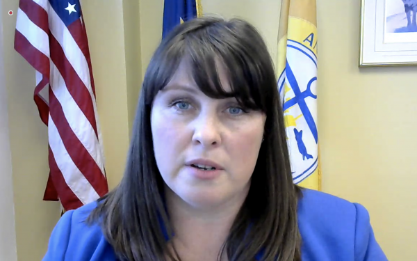 Screen shot of woman in a blue blazer with flags behind her