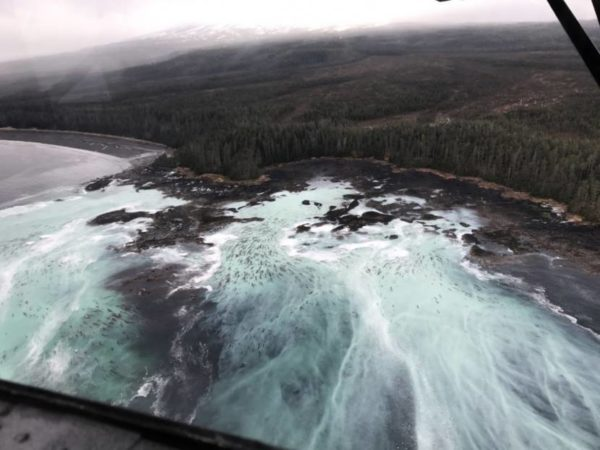 as seen from above, waves crash against a rocky coast on a cloudy day