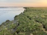 A grassy tundra area next to a wide river with an orangish sun