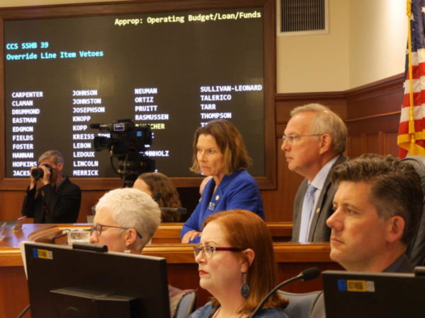 Lawmakers sitting at a rased wooden desk