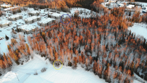 An aerial photograph of a snow-covered wooded area with buildings nearby.