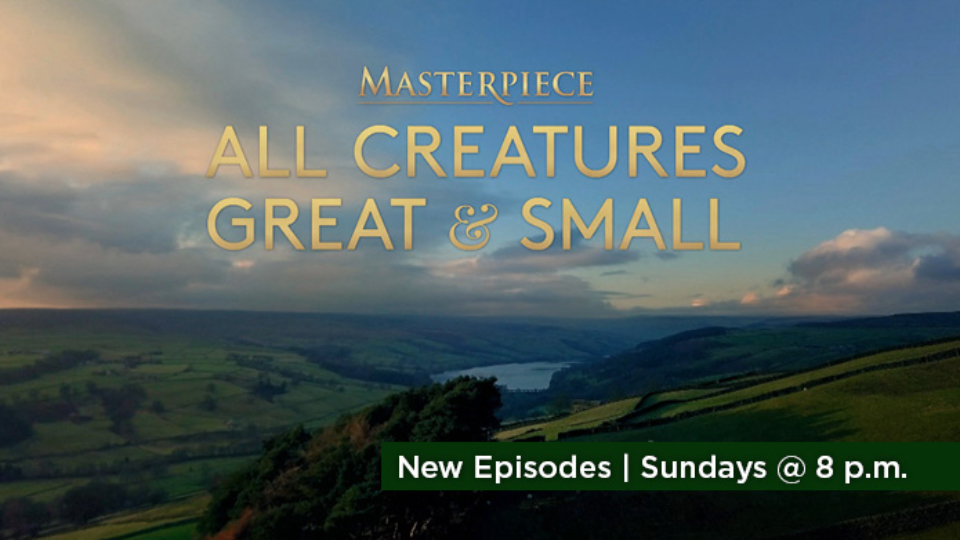 Watch All Creatures Great and Small on MASTERPIECE Sundays at 8 p.m. on Alaska Public Media TV.