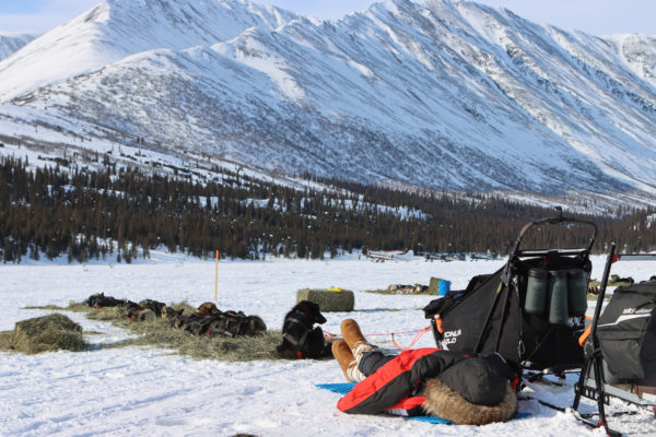 A musher rests under a parka, near a dog team and in front of a mountain range