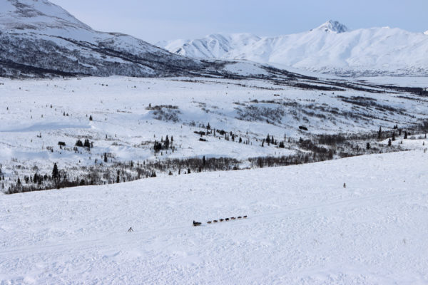 An aerial view of a musher and sled dogs racing across a vast, snowy expanse with mountains in the background.