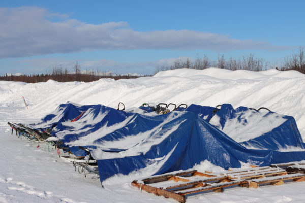 Sleds sit under a big blue tarp in the snow.