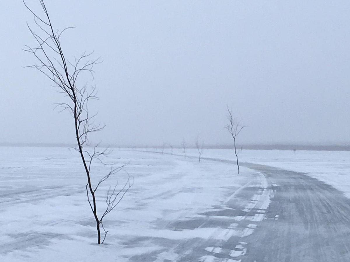 A windswept road