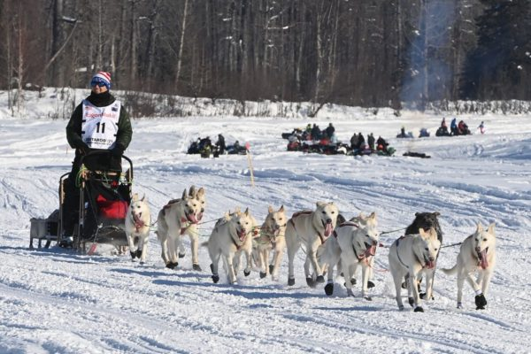 A dog team drives down a white trail with fans in the background on a sunny day