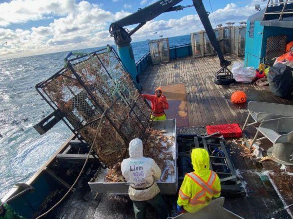 A deck of a  boat pulling up crab pots