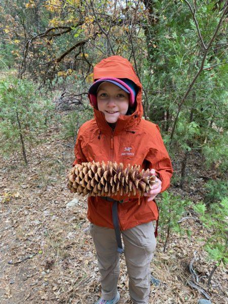 Tui Stanbury with a giant pinecone