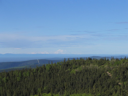 A large forested hilly area with a large snowy mountain in the distance