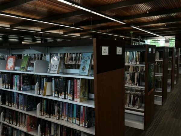 Several library shelves